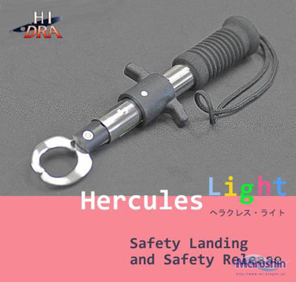 ヘラクレス・ライトイメージ画像